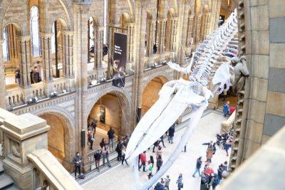 tour-virtuale-dei-musei-ecco-quali-visitare-da-casa-con-i-bambini
