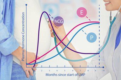beta-hcg-impartiamo-a-leggere-i-valori-della-gravidanza