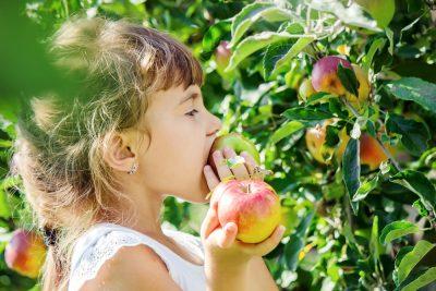 alimentazione-sana-e-sostenibilita-ambientale