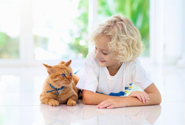 i-bambini-autistici-preferiscono-i-gatti-ai-cani