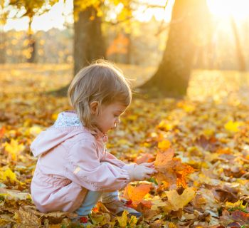 la-magia-del-foliage-uno-stimolo-per-i-bambini