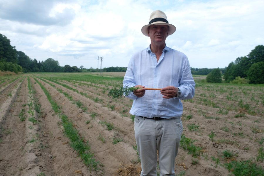 nella-bio-fattoria-hipp-per-toccare-con-mano-la-vera-agricoltura-biologica