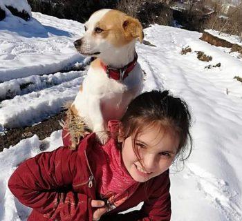 il-cagnolino-sta-male-bimba-turca-percorre-chilometri-nella-neve-per-portarlo-dal-veterinario