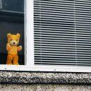 a-caccia-dell'orso-dalle-finestre-del-mondo:-l'iniziativa-virale