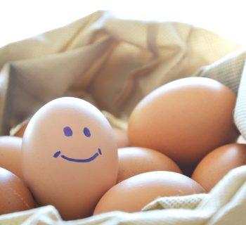 bimbi-allergici-alle-uova-torte-e-biscotti-possono-aiutare-a-contrastarla