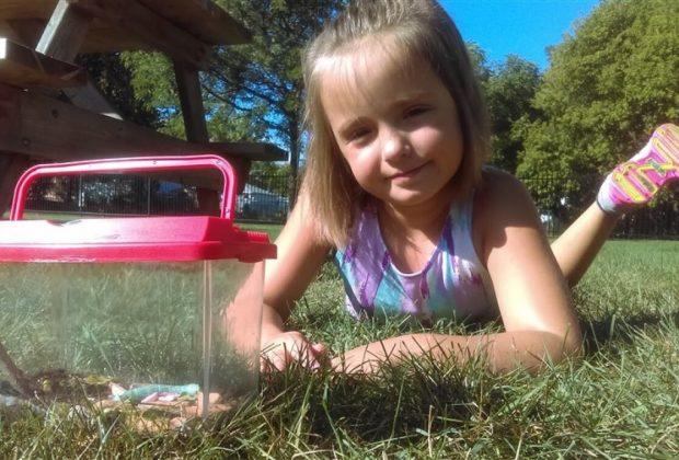 bullizzata-per-la-sua-passione-per-gli-insetti-a-8-anni-pubblica-la-sua-prima-ricerca-su-una-rivista-scientifica
