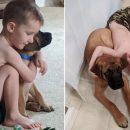 bambini-e-animali-ecco-dash-il-cane-che-si-mette-in-punizione-insieme-al-suo-padroncino