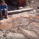 Realizza un dinosauro di fango come compito in classe