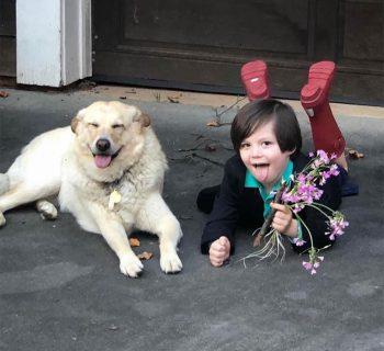 il-dolce-matrimonio-tra-un-bambino-e-il-suo-cane-anziano