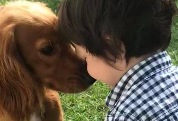 bimbo-autistico-torna-a-parlare-grazia-alla-pet-therapy-la-storia-di-leon-e-fern
