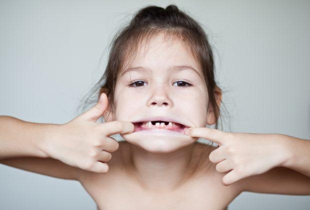 i-denti-da-latte-sono-una-fonte-di-cellule-staminali-ecco-il-parere-degli-esperti