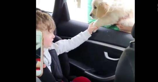 la-gioia-del-bimbo-autistico-c