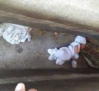 madre-abbandona-il-figlio-di-due-mesi-in-un-cimitero
