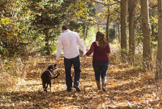 nelle-famiglie-ci-sono-sempre-meno-bambini-ma-piu-cani