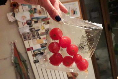 fuori-stagione-e-in-buste-di-plastica:-polemiche-per-i-pomodorini-distribuiti-nelle-scuole