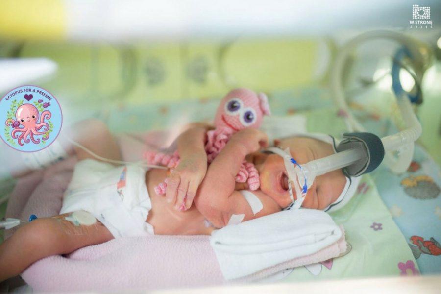 giornata-mondiale-prematuri-octopus-for-a-preemie-tra-le-iniziative-2018